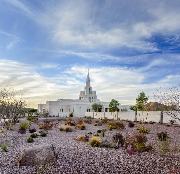 Phoenix LDS Temple Desert Scene