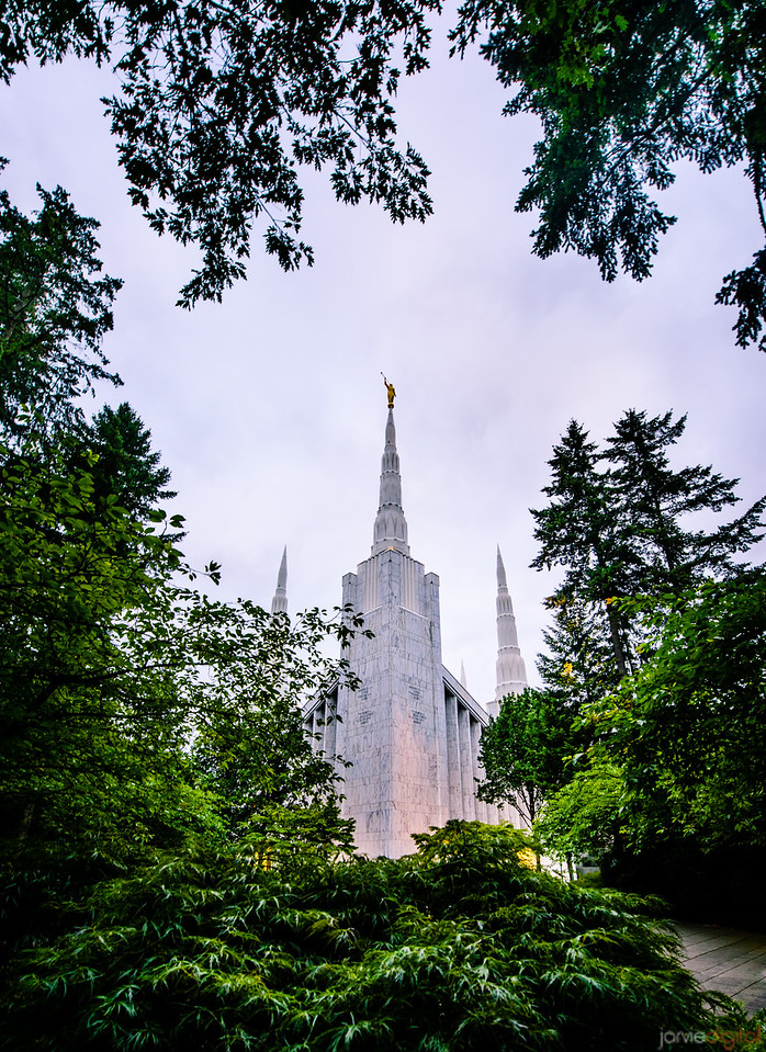 Portland Temple Through Trees