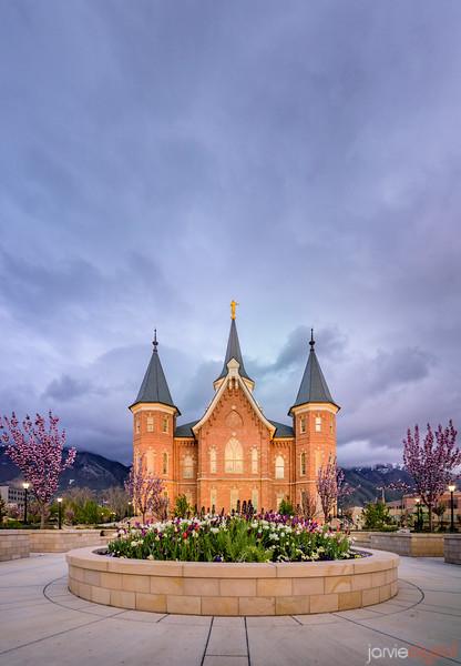 Provo City Center Temple - Tulips