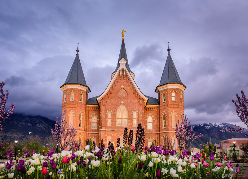 Provo City Center Temple - Flowers West