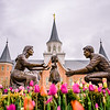 Provo City Center Temple - Playing in the Tulips