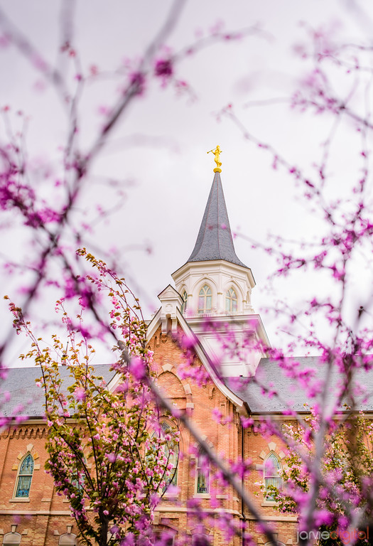 Provo City Center Temple - Purple Spire