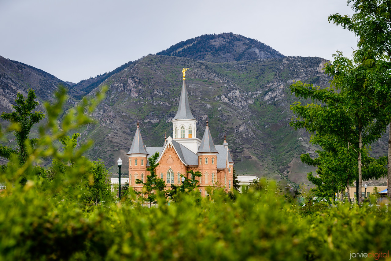 Provo City Center Temple above bushes