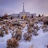 Reno Temple Sage