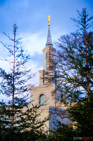Sacramento Temple Spire through Trees