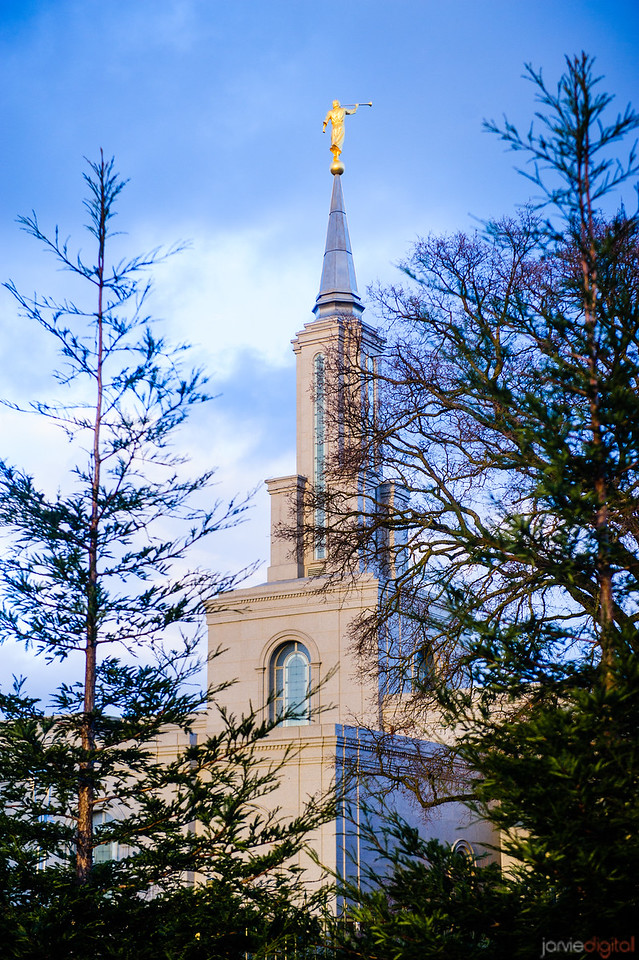 Sacramento Temple Spire through Trees