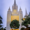San Diego Temple With Tree