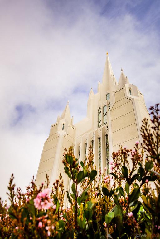 San Diego Temple_SJ07829