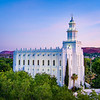 St George Temple - From the trees
