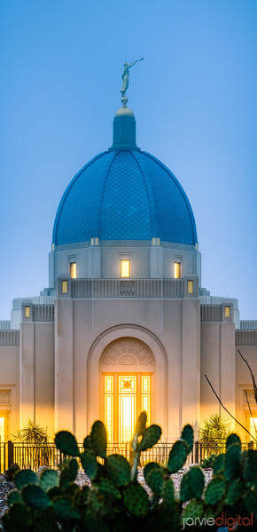 Tucson LDS Temple - cactus twilight