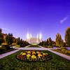 DC Temple twilight Flower patch
