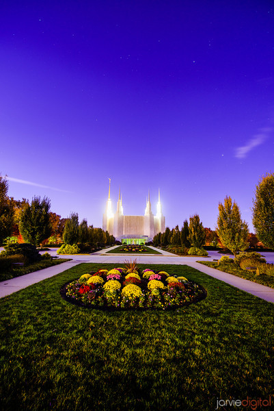 DC Temple twilight Flower patch