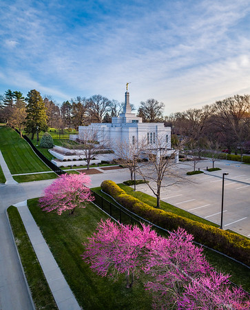 Winter Quarters Temple - Spring Purple