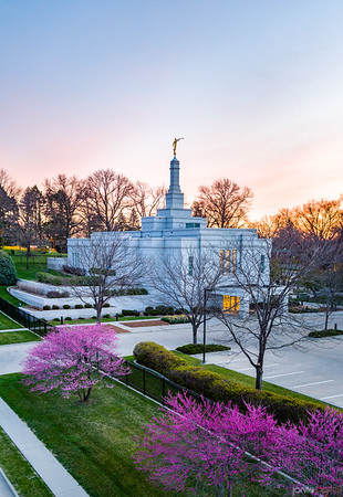 Winter Quarters Temple - Morning purple