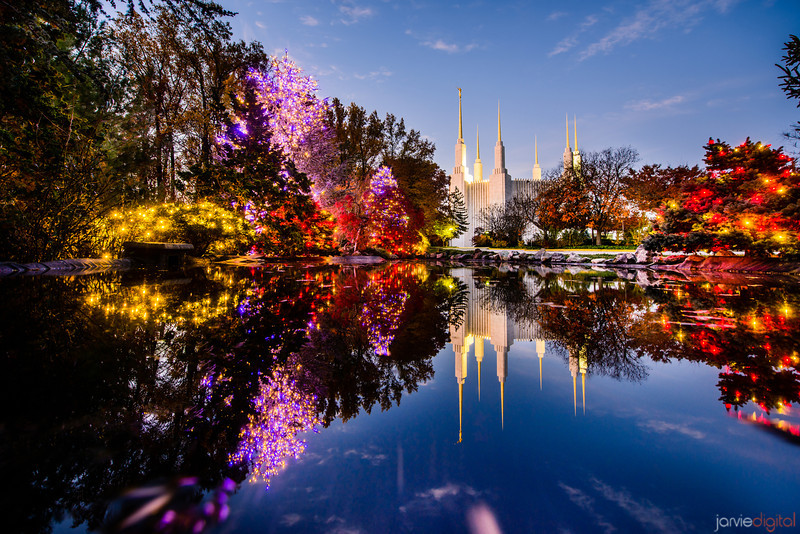 DC LDS Temple Reflection in Fall with Christmas Lights