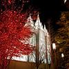 Salt Lake Temple at Christmastime