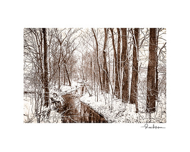 Creek On a Snowy March Day