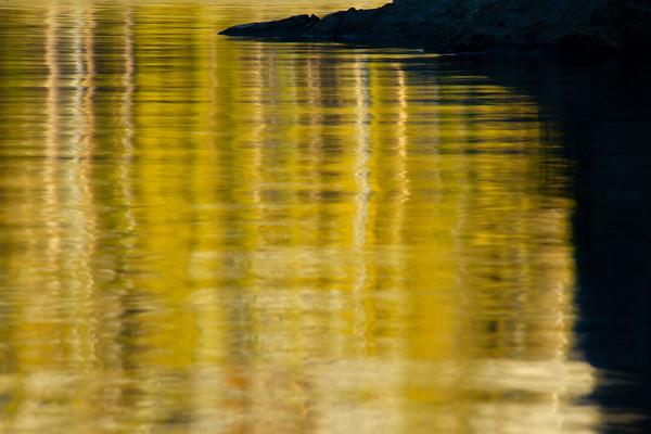 On Golden Green Pond