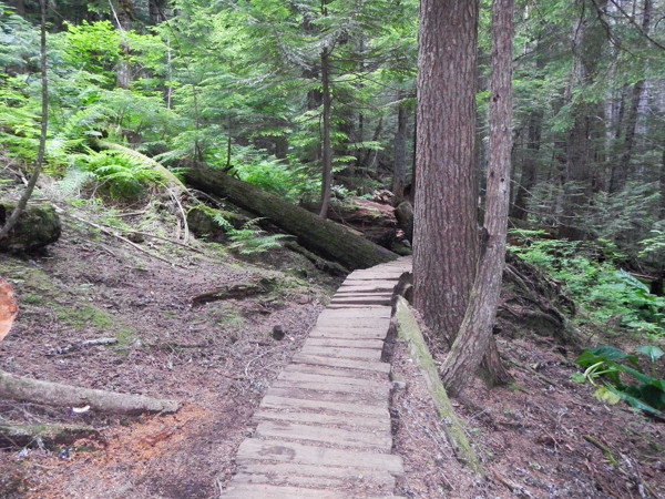 1805 hrs I'm through AS #6 and on the final 5 k's into Whistler. This mountain bike boardwalk was prevalent.