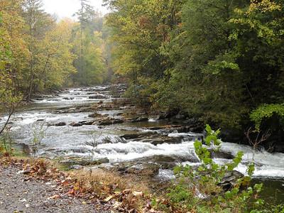 Citico Creek