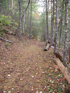 Trail to Ballplay Falls
