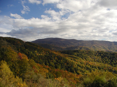 Beautiful Autumn Colors this weekend from the Skyway.
