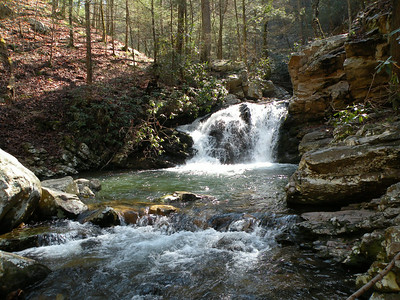 One of many waterfalls in Gee Creek Wilderness TN  Slopes of Starr Mtn.  Cherokee National Forest, TN
