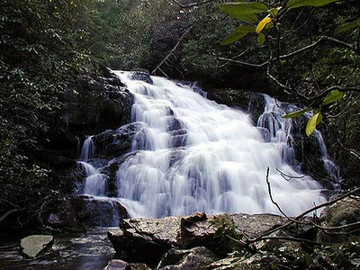 Yellow Creek Falls. Very first trip here ever. Slopes of Starr Mtn. CNF TN