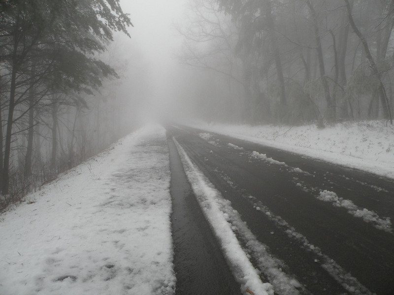 Road on the way to the top of Chilhowee Mountain Campground in Polk Co. TN Heading toward our hike of Benton Falls. The fog up here was really thick!