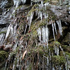 Icicles all around me