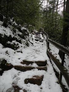 Trail heading to Benton Falls