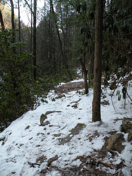 Scenic Spur Trail covered in Snow
