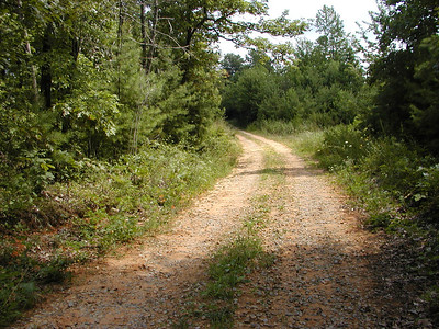 Red dirt road atop Starr Mountain. Anyone who knows me knows I am a hillbilly and love me some red dirt roads.