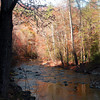 Citico Creek Wilderness, TN<br /> The lay of the land here is that of a steep sided gorge with the road passing through the bottom and river running paralellel to the road most of the way.  The gloom of the gorge is contrasted with the burnished bronze glow of sun from above on Autumn leaves. <br /> Nov. 7, 2008