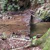 Rotten old bridge