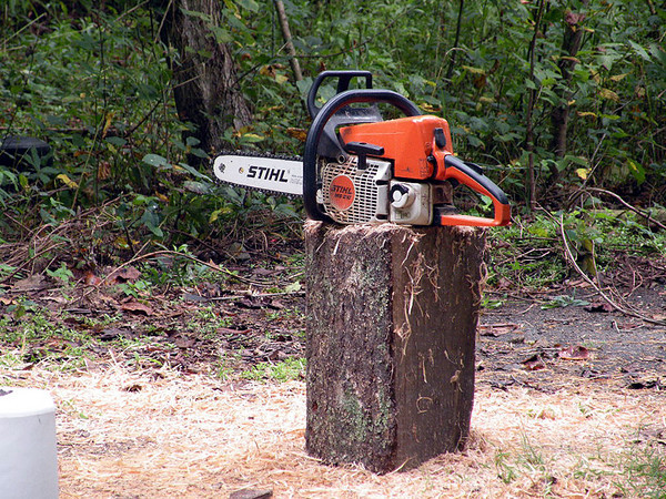 Close up of camper's chainsaw.