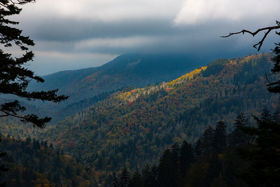 Spotlight on the fall colors near Newfound Gap on the Tennessee side of the Great Smoky Mountains National Park