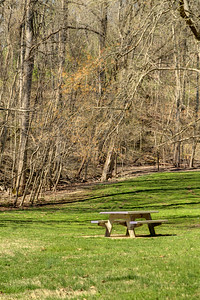 A picnic table surrounded by vibrant green grass in early Spring at the South Holston Dam Recreation Area in Bristol, TN on Saturday, April 5, 2014. Copyright 2014 Jason Barnette
