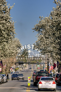 Early blooming spring trees on State Street with a view of the infamous State Street Sign in Bristol, TN on Saturday, April 5, 2014. Copyright 2014 Jason Barnette