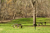 A pair of picnic tables surrounded by vibrant green grass in early Spring at the South Holston Dam Recreation Area in Bristol, TN on Saturday, April 5, 2014. Copyright 2014 Jason Barnette