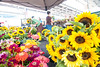Fresh flowers for sale at the Chattanooga Market at the First Tennessee Pavilion in Chattanooga, TN on Sunday, July 19, 2015. Copyright 2015 Jason Barnette