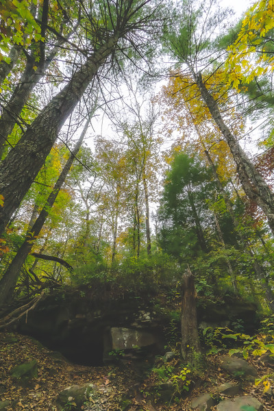 Cumberland Mountain State Park in Crossville Tennessee
