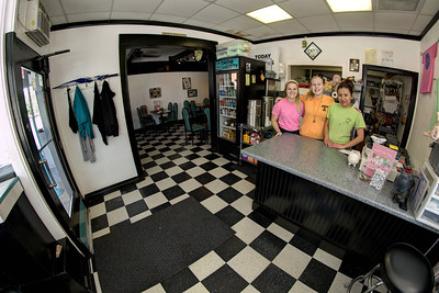 The Hawgettes pose for a photo inside the cozy and eclectic interior at the Hawg-N-Dawg in Erwin, TN on Saturday, June 13, 2015. Copyright 2015 Jason Barnette