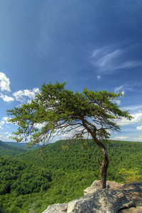 The view from Buzzard's Roost along the Gorge Scenic Drive Motor Nature Trail at Fall Creek Falls State Park in Spencer, TN on Thursday, July 16, 2015. Copyright 2015 Jason Barnette