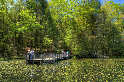 Visitors explore the scenery on a pier at Lily Pad Cove at Bays Mountain Park and Planetarium in Kingsport, TN on Saturday, May 2, 2015. Copyright 2015 Jason Barnette