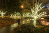 Hundreds of lights decorate Krutch Park as part of the Regal Celebration of Lights in Knoxville, TN on Monday, December 15, 2014. Copyright 2014 Jason Barnette