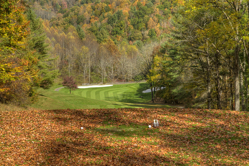 Leaves cover the ground at the blue tee on Hole 3 at Redtail Mountain Golf Club in Mountain City, TN on Monday, October 20, 2014. Copyright 2014 Jason Barnette