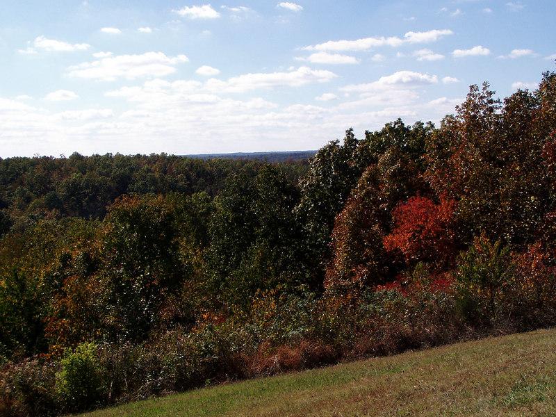 Fall Colors Along Natchez Trace