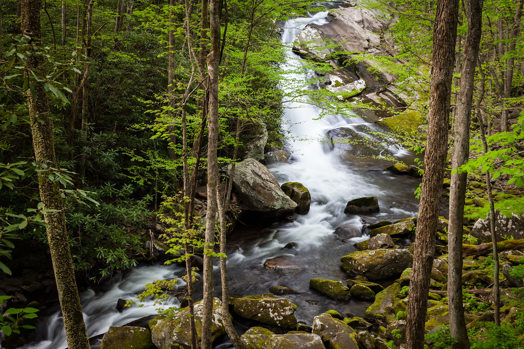 One of the many beautiful waterfalls along the Middle Prong of the Little River. Great Smoky Mountains National Park, TN<br /> <br /> TN-120413-0378