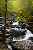 bend of the Middle Prong of the Little River. Great Smoky Mountains National Park, TN<br /> <br /> TN-120414-0052